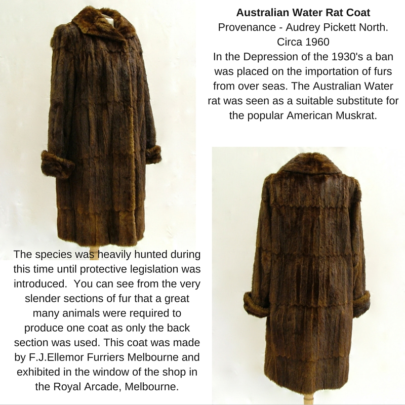 1960's water rat coat collage